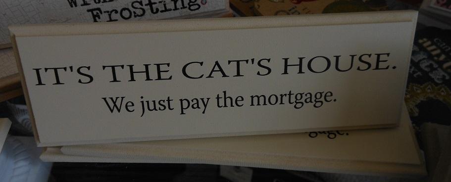 Cat's House-